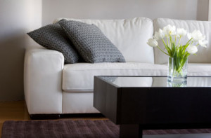 Upholstery Cleaning Minneapolis MN